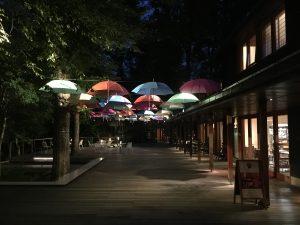 ハルニレテラスの夜景
